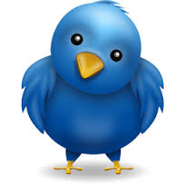 Twitter-icon-the-bird